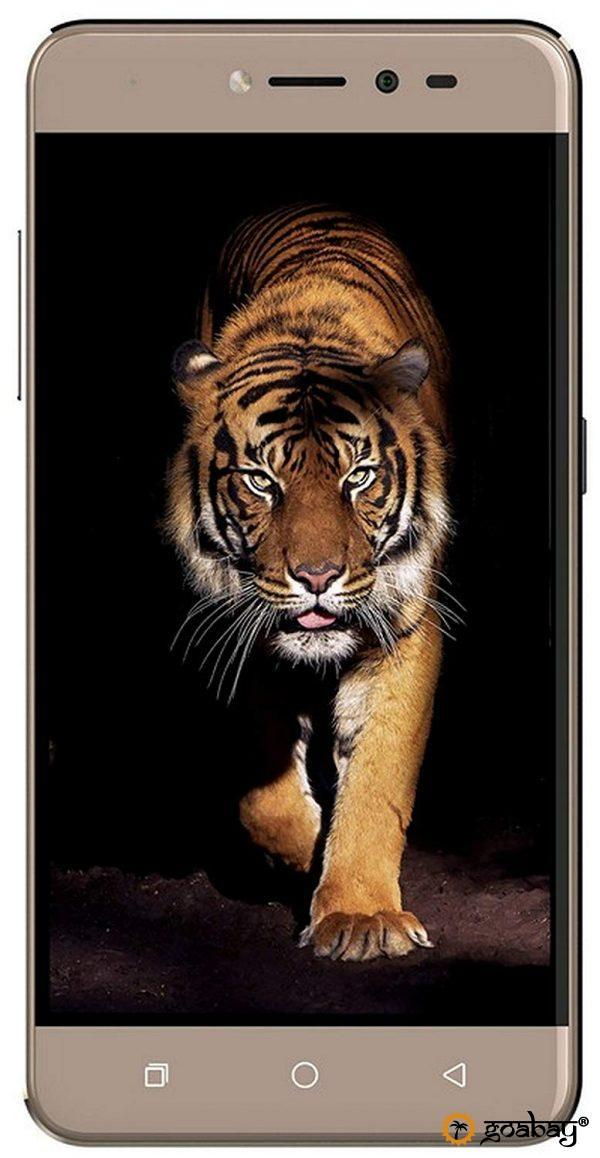мобильный телефон, купить, смартфон, товары из Индии, mobile phone, buy, smartphone, goods from India,